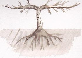 Zweiarmiger Schnurbaum